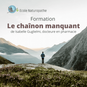 formation chainon manquant